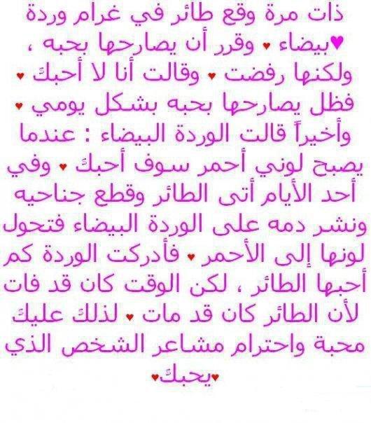 9isa mo3abira