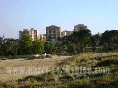 صور من مدينة تيارت / الجزائر